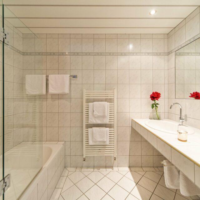 Appartement Natur - Badezimmer - Beispiel